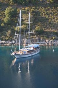 Seaborn Legend Yoga Cruise