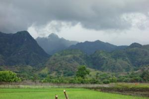 Тимор