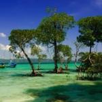 Никобарские острова